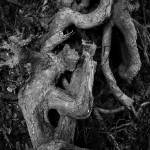 """Gnarled Roots"" by RobTerwilliger"