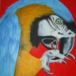 """""""parrot"""" by conashlib"""