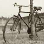"""Bici vintage"" by albatross"