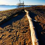 """Beach Art"" by Katchlight"