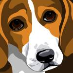 """Beagle"" by waterart"