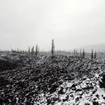 """Snow in the Lava Flow"" by photorina"