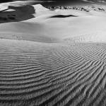 """Death Valley Dunes_Panorama1_BWjpg"" by SeBuKi"