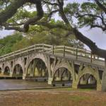 """The Bridge - Currituck Heritage Park"" by robbdee40"