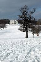 The Mansion, from the Golf Course under snow