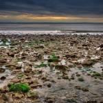 """Overcast Beach"" by stevewalterphoto"