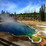 """""""Yellowstone Park"""" by Ffooter"""