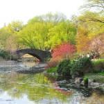 """""""Central Park Bridge"""" by anniebanannie"""