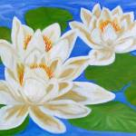 """White water lily"" by elajanus"