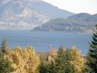 Columbia River Gorge View, from Skamania, Washingt