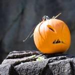 """""""Halloween pumpkin"""" by nicolevaughan"""