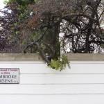 """pembroke gardens dip"" by PFISTERDIANE"
