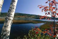 View of a Lake During Fall, Upper Hadlock Pond, Mt