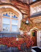 Ivy with Fall Colors,Princeton University, New Jer
