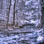 """Infrared Stream"" by photocatphoto"