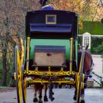 """Colonial Williamsburg VA Carriage Ride 57183"" by JTPatterson"