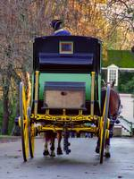 Colonial Williamsburg VA Carriage Ride 57183