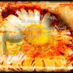 """Innocence"" by ZOlga"