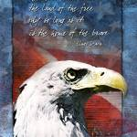 """""""Land of the Free Troop Support Card"""" by William63"""