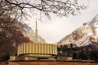 provo temple and tree framing