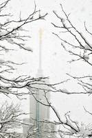 Mount timpanogos Temple big snow storm 6
