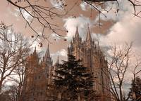 Salt lake temple and mass of branches infra