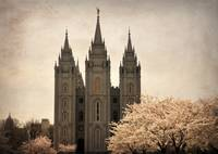 Salt lake temple with blossoming trees