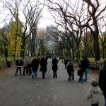 """Central Park"" by KathleenPrice"
