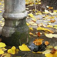 Roman drinking fountain in autumn