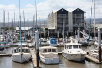 Nap0485  Boat Harbour Launceston, Tasmania