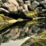 """Reflection"" by vandann04"