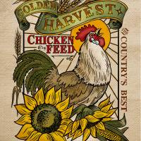 Chicken Feed Art Prints & Posters by Roger Dullinger