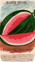 Burt's Water Melon Seeds