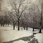 """Highland Village Snow"" by colgdrew"