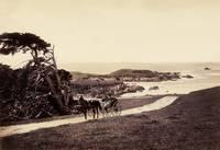 Monterey Coastline c1880 by WorldWide Archive