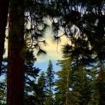 """""""Take A Yosemite Breath"""" by photobud606"""