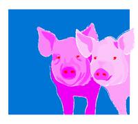 Pair of Pigs