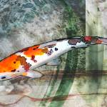 """Sanke Koi on Green Watercolored Background"" by ElainePlesser"
