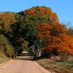 """""""Autumn Country Lane"""" by jerrysfoto"""