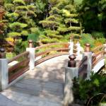 """""""A Japanese Bridge from Sun to Shade"""" by ElainePlesser"""