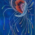 """Swimming Jellyfish"" by seewater"
