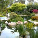 """Japanese Garden Panorama"" by ElainePlesser"