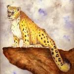 """Snow Leopard"" by vigliotti"