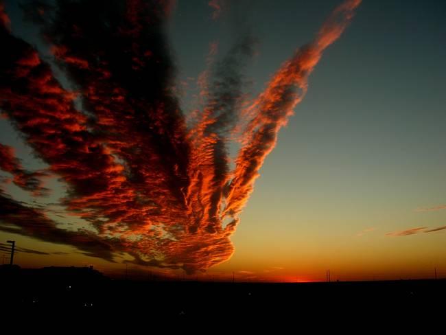 Le Meraviglie della Natura -Jan--sunset_art