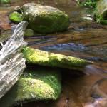 """""""Lost Creek (IMG_0570+)"""" by jvandyke"""