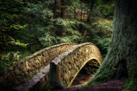 The Fairyland Bridge