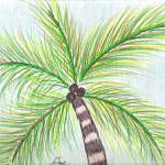 """Palm Tree"" by ConnieCapone"