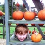 """""""Pumpkin Head"""" by ecnchantedart"""