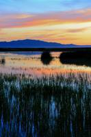 Farmington Bay Sunset
