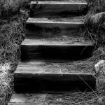 """Stairway to..."" by NoreenBerman"